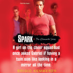 Excerpt from Spark