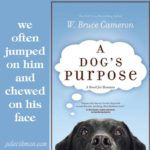 Excerpt from A Dog's Purpose
