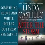 Excerpt from After the Storm