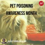 Pet Poisoning Awareness